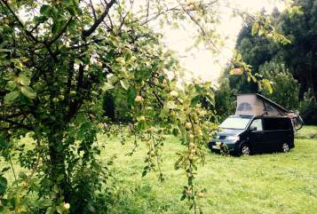 Hire a motorhome in Konstanz from private owners| Volkswagen  VW California