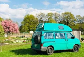 Hire a motorhome in Holm from private owners| VW Der Frosch