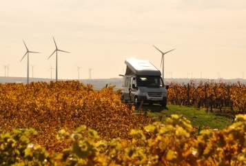 Hire a motorhome in Mainz from private owners  Ford Odgar