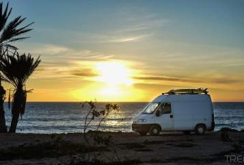 Hire a motorhome in München from private owners| Fiat Osho