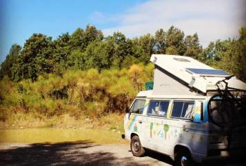Hire a motorhome in Mainz from private owners| VW Westfalia Princess