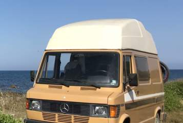 Hire a motorhome in Stuttgart from private owners| Mercedes-Benz Carlos