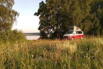 Hire a motorhome in Holzwickede from private owners  VW  VW T6 Bulli