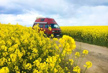 Hire a motorhome in Bremen from private owners  Volkswagen  Jupp