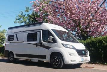 Hire a motorhome in Burrweiler from private owners| Knaus Camping Queen
