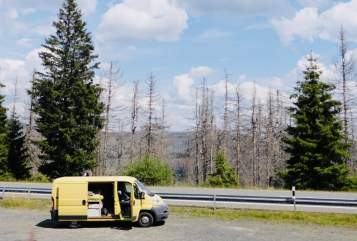 Hire a motorhome in Ammersbek from private owners| Fiat  Bibo der Bus