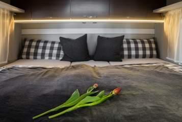 Hire a motorhome in Mindelheim from private owners| ETRUSCO  Sunlight