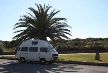 Hire a motorhome in Niederau from private owners  Volkswagen Flöckchen