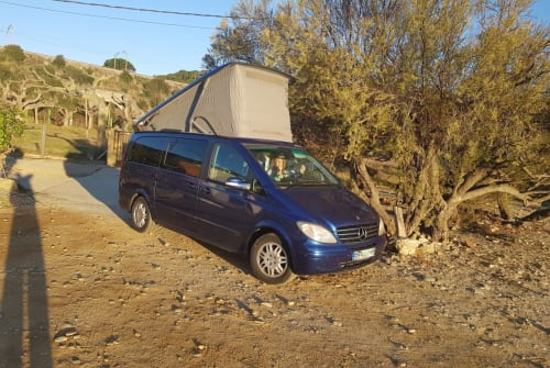 Hire a motorhome in Madrid from private owners| Mercedes Benz Viano Merry