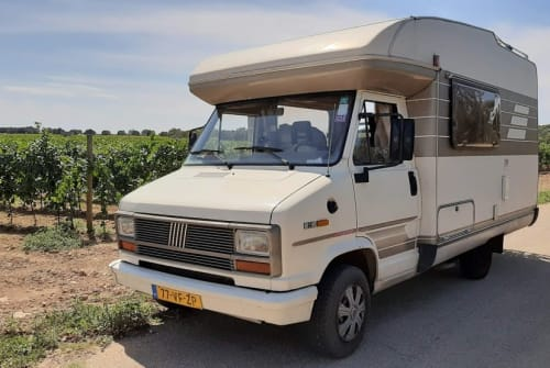 Hire a motorhome in Amsterdam from private owners| Fiat Ducato Boelie