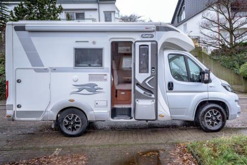 Hire a motorhome in Weingarten from private owners  Fiat Tildi*Neu