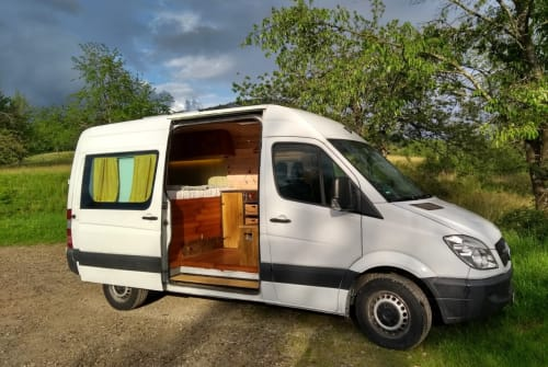 Hire a motorhome in Freiburg im Breisgau from private owners| Mercedes Sterni