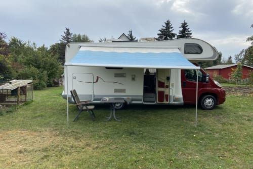 Hire a motorhome in Papendorf from private owners| Fiat Ducato Sea Sharky