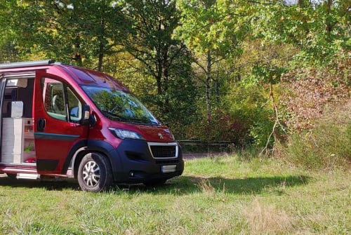 Hire a motorhome in Hamburg from private owners| Bravia RED SURFER