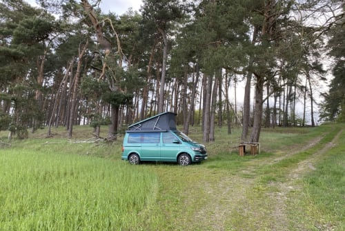 Hire a motorhome in Berlin from private owners  VW Emma