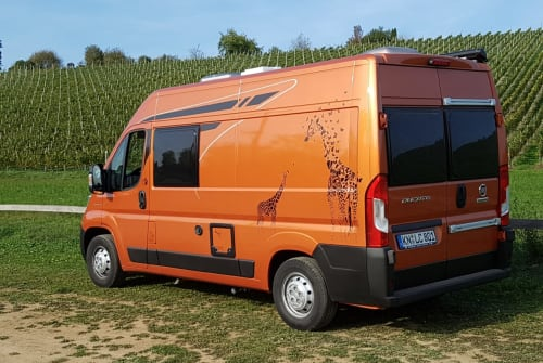 Hire a motorhome in Gailingen am Hochrhein from private owners| Poessl Terra