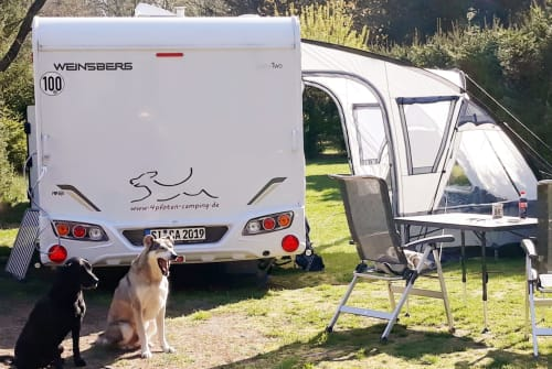 Hire a motorhome in Freudenberg from private owners| Weinsberg 4pfoten-camping