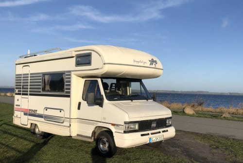Hire a motorhome in Westerholz from private owners| Fiat Ducato Hoppetutzen