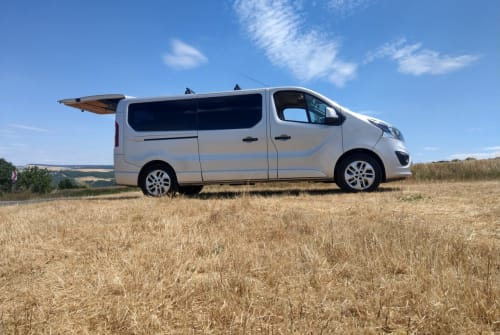 Hire a motorhome in Köln from private owners  OPEL Paula Marli