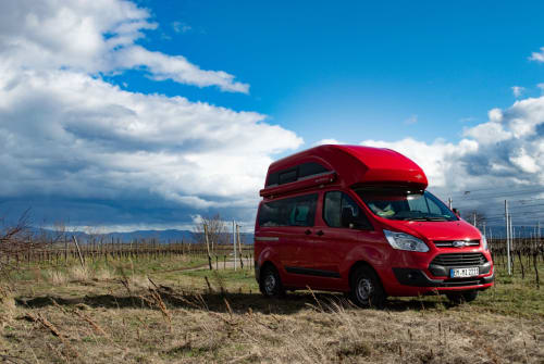 Hire a motorhome in Endingen am Kaiserstuhl from private owners| Ford EMMI