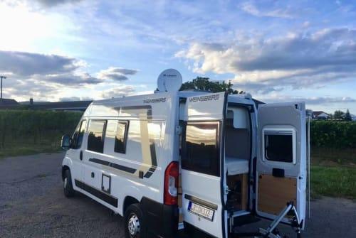 Hire a motorhome in Landau in der Pfalz from private owners| Weinsberg Ginbie Junior