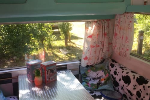 Hire a motorhome in Den Haag from private owners| Kip  The pin-up Kip
