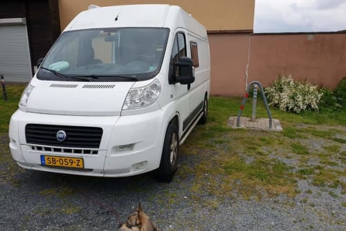 Hire a motorhome in Almere from private owners| Fiat Duke