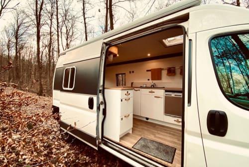 Hire a motorhome in Neustadt an der Weinstraße from private owners  Fiat DIY Campervan