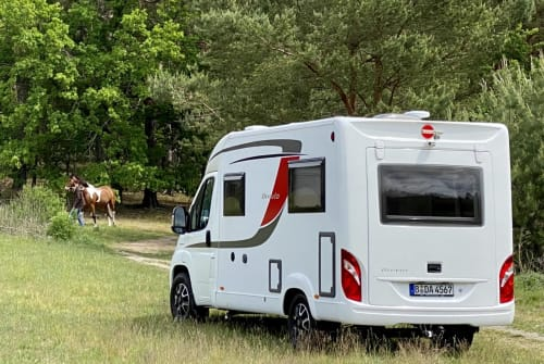 Hire a motorhome in Berlin from private owners| Bürstner Marti