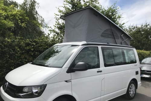 Hire a motorhome in Karlsruhe from private owners| Volkswagen T6 CALIFORNIA